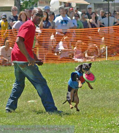 17th Annual SPCA Doggy Dash 094