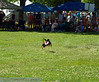 17th Annual SPCA Doggy Dash 087