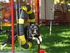 17th Annual SPCA Doggy Dash 054