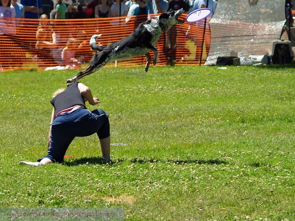 17th Annual SPCA Doggy Dash 138