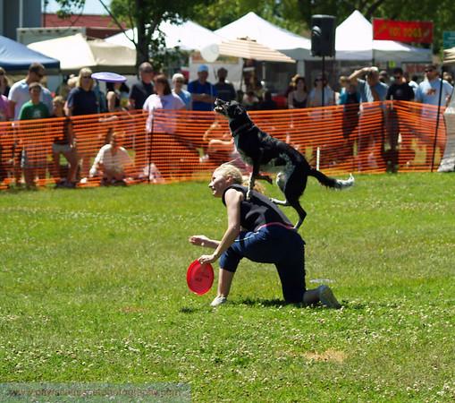 17th Annual SPCA Doggy Dash 139