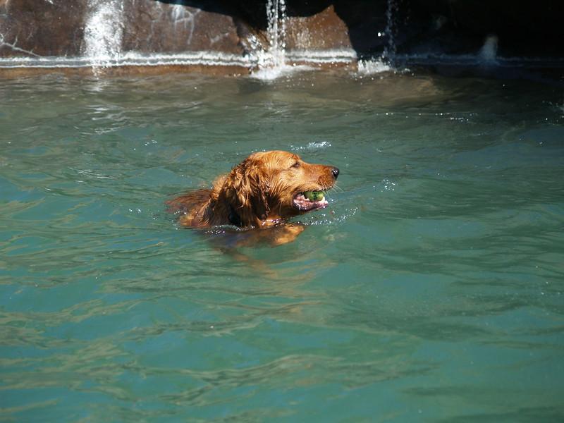 2009 Golden Swim Party 082