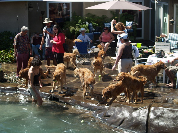 2009 Golden Swim Party 090