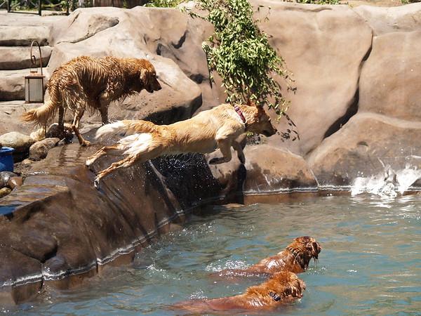 2009 Golden Swim Party 144
