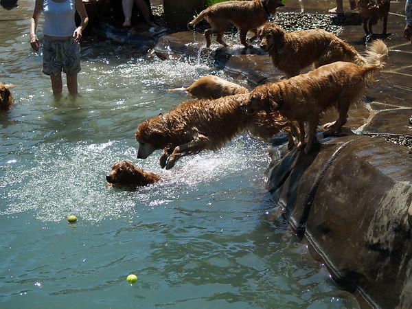 2009 Golden Swim Party 138