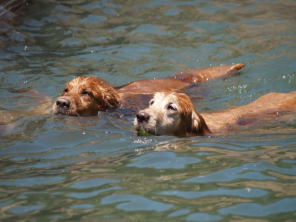 2009 Golden Swim Party 148
