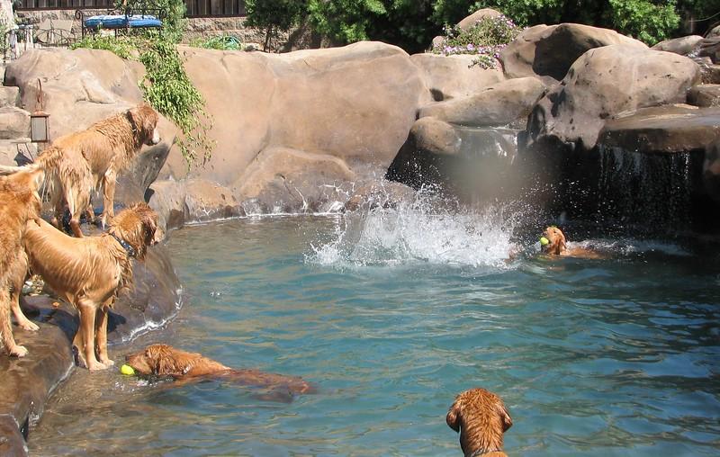 2009 Golden Swim Party 250