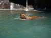 2009 Golden Swim Party 081