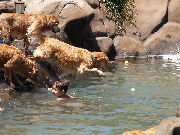2009 Golden Swim Party 175
