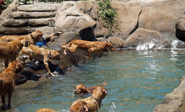 2009 Golden Swim Party 143