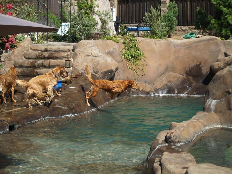 2009 Golden Swim Party 012