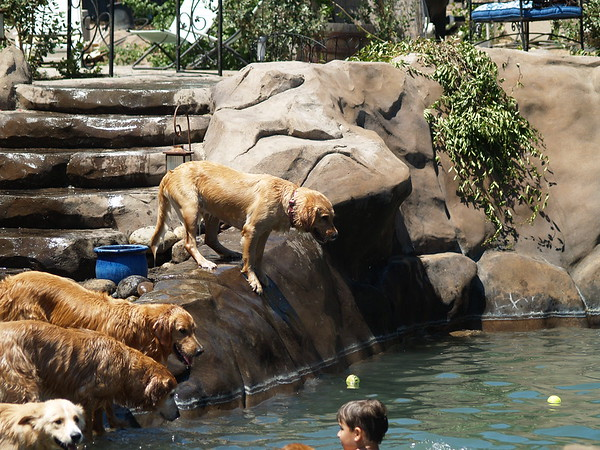 2009 Golden Swim Party 172