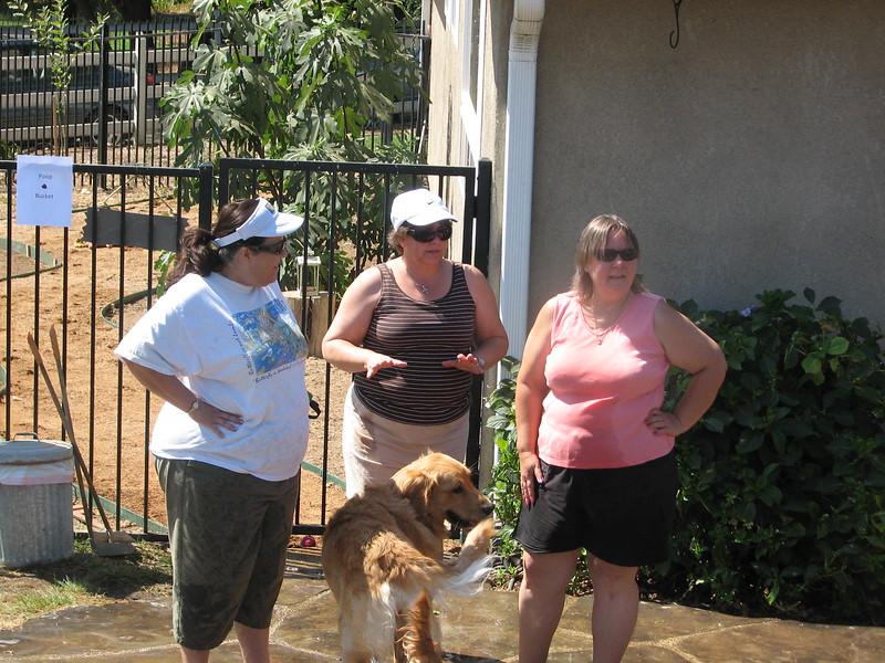 2009 Golden Swim Party 267