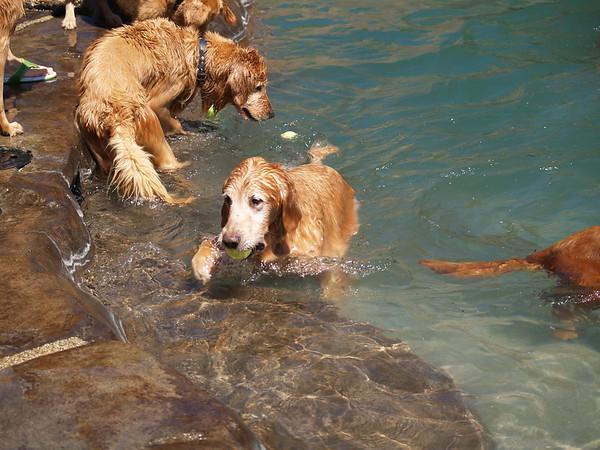 2009 Golden Swim Party 076