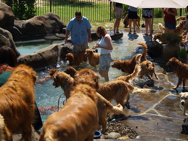 2009 Golden Swim Party 089