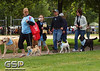 K-9 Cancer Walk Elk Grove 2011 048