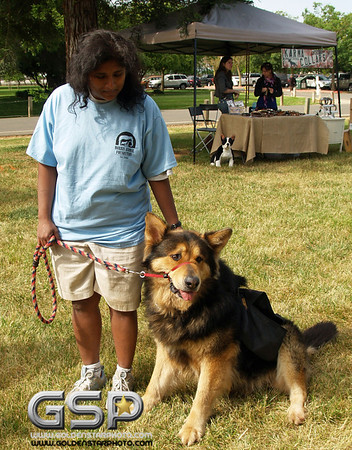 K-9 Cancer Walk Elk Grove 2011 019