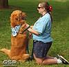 K-9 Cancer Walk Elk Grove 2011 041