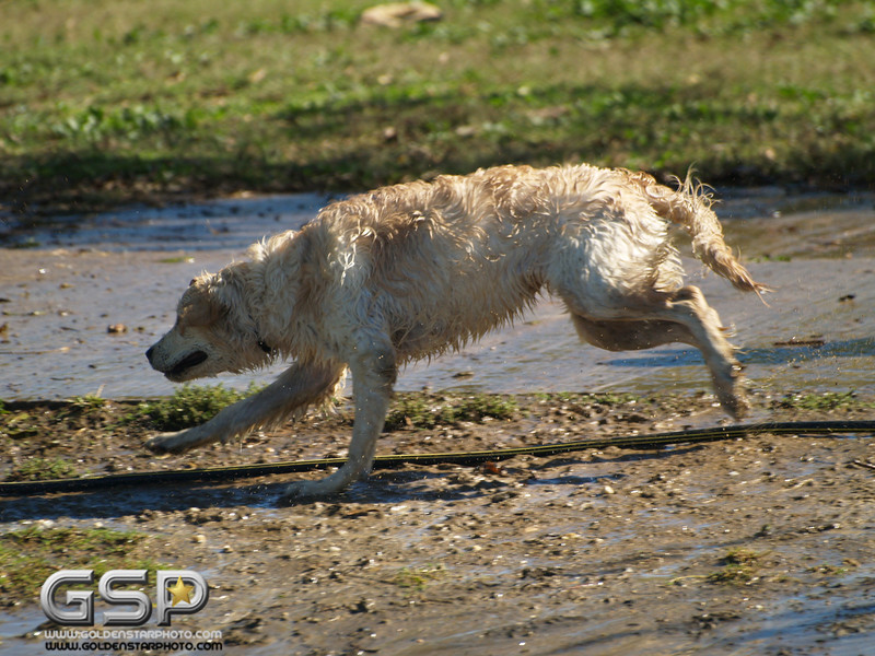 Howling Good Time 152