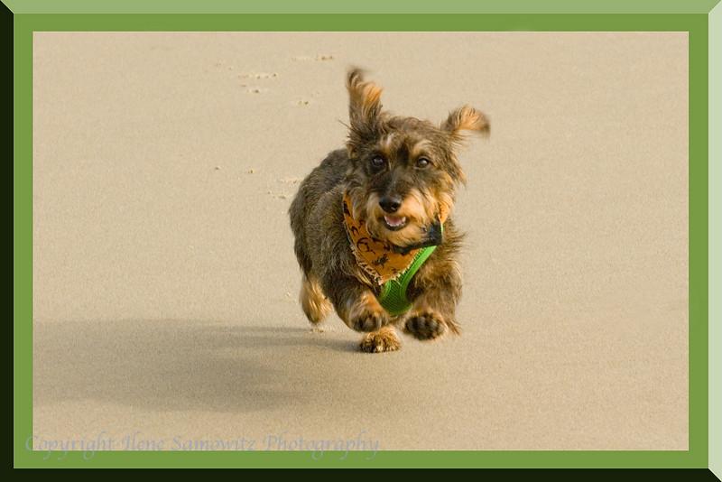 Misty - Run