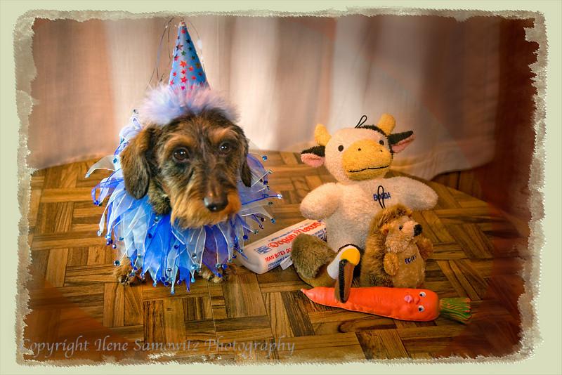 Misty's Birthday