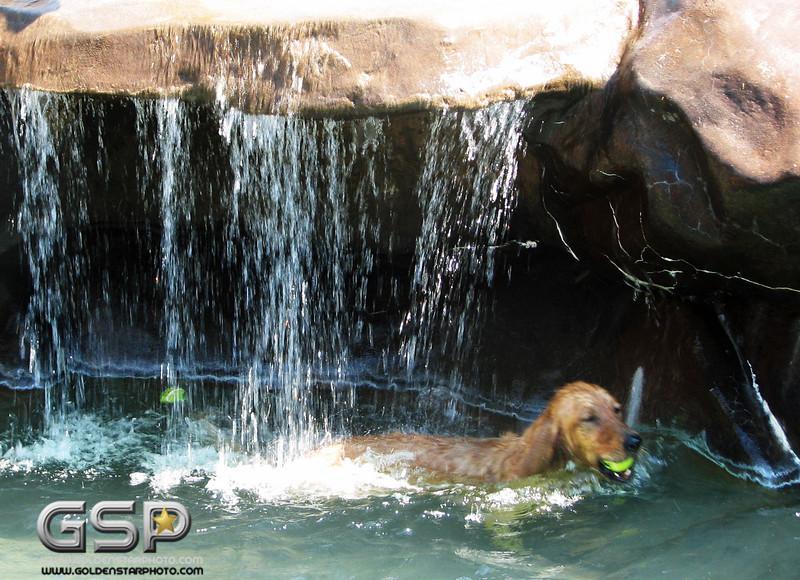 Golden Swim Party 055