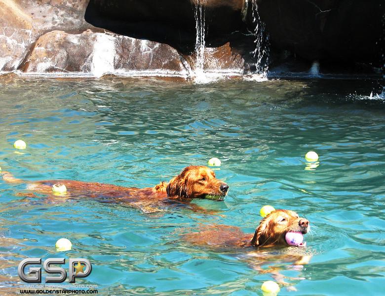 Golden Swim Party 046