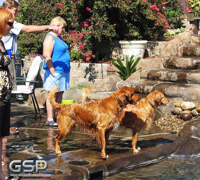 Golden Swim Party 026