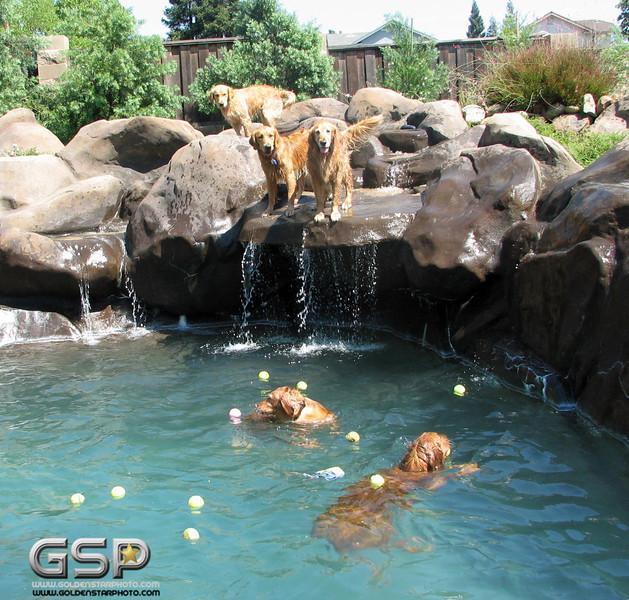 Golden Swim Party 076