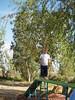 Harvest Romp 08 246