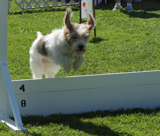 Pentathlon 2011 017