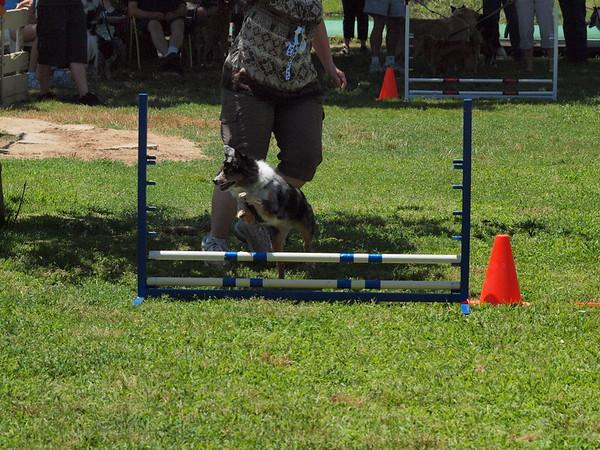 Pentathlon 2011 227