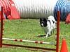 Pentathlon 2011 158