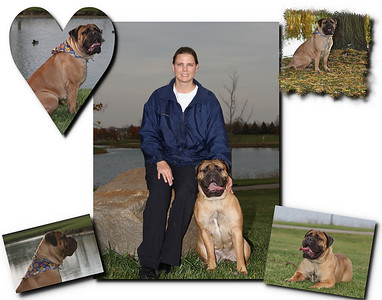 sherri dog 2