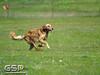 Spring Fling March 2010 155