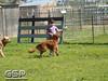 Spring Fling March 2010 176