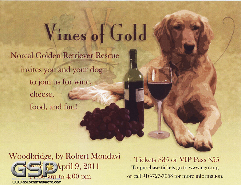 Vines of Gold, NORCAL Golden Retriever Rescue
