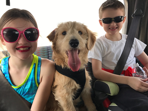 Emitt, center, with Makenna and Gavin<br /> Submitted by Sarah French