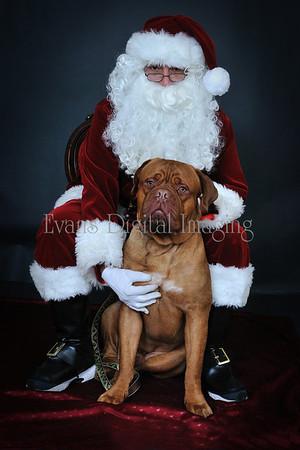 Pet Portraits with Santa 2011