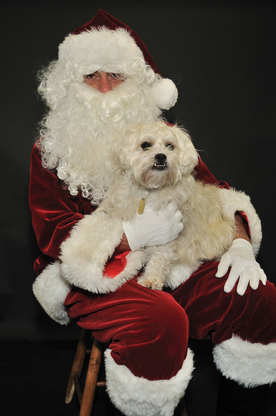 Santa_7812 robinson_angus