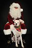 Santa_7842 morrison_roxy