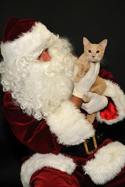 Santa_7880 breland_mischief