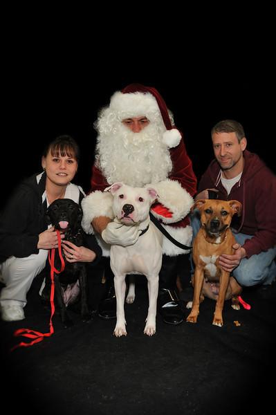 Santa_7986 davis_3 dogs