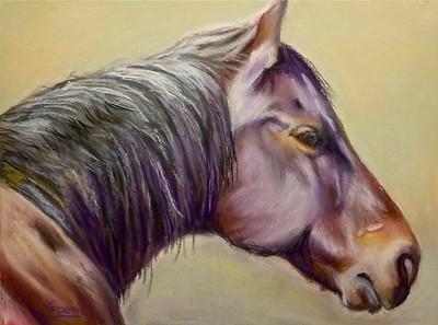Horse of Many Colors. Tucker