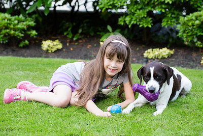 Pet Safe AJ-3570
