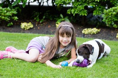 Pet Safe AJ-3569