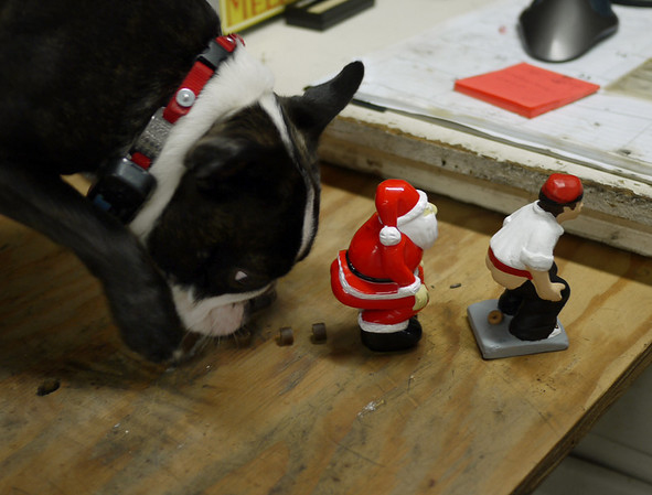 Doggie Caganer