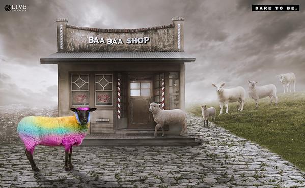 Baa Baa Shop