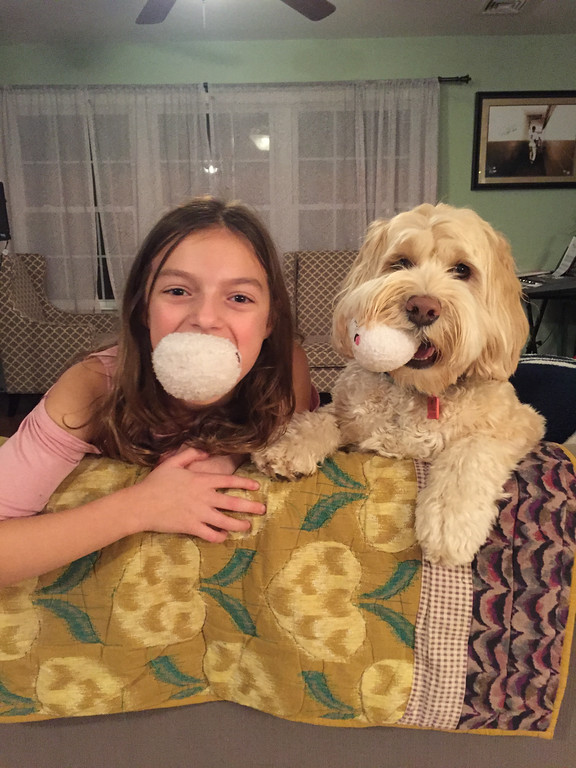 . Hazel, 2, a \'Labradoodle\' and Grace Madelone of Saugerties are �Besties,� wrote Jeff Madelone in the nomination. The pair took second place.