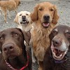 Annie, George, Sawyer and Dakota making a funny face